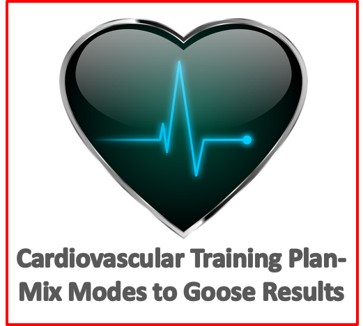 cardiovascular training plan