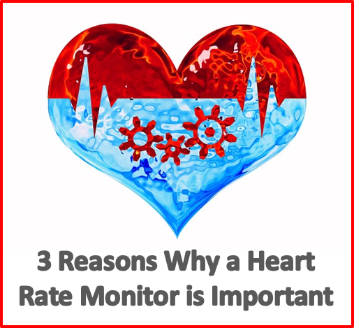 why a heart rate monitor is important